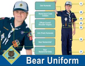Bear-Uniform-Guide