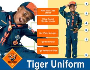 Tiger-Uniform-Guide